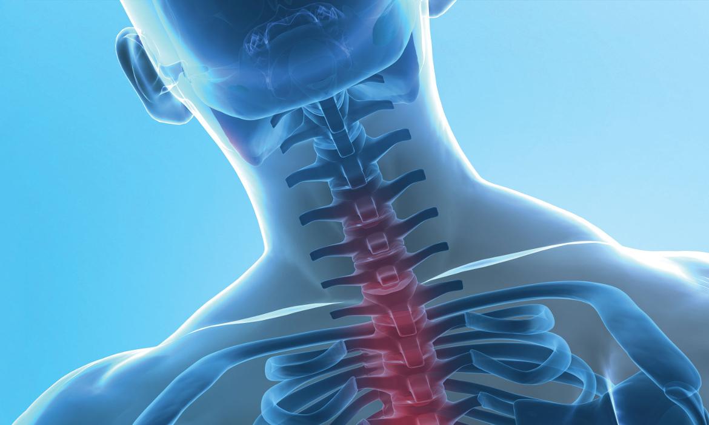 orthosan-sanitaria-ortopedia