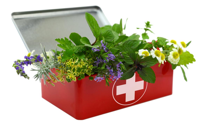 farmacia-nativita-treviso